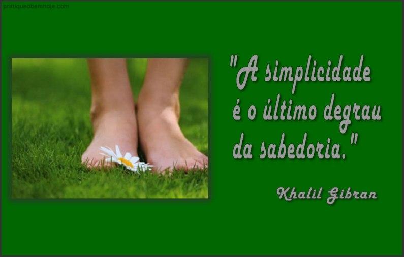 A simplicidade é o último degrau da sabedoria 2