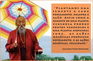Plantamos uma semente a cada pensamento