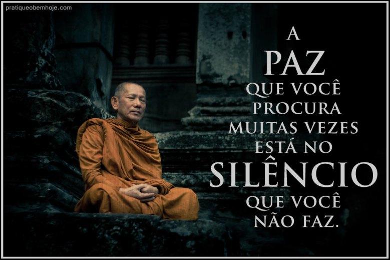 A paz que você procura muitas vezes está no silêncio que você não faz