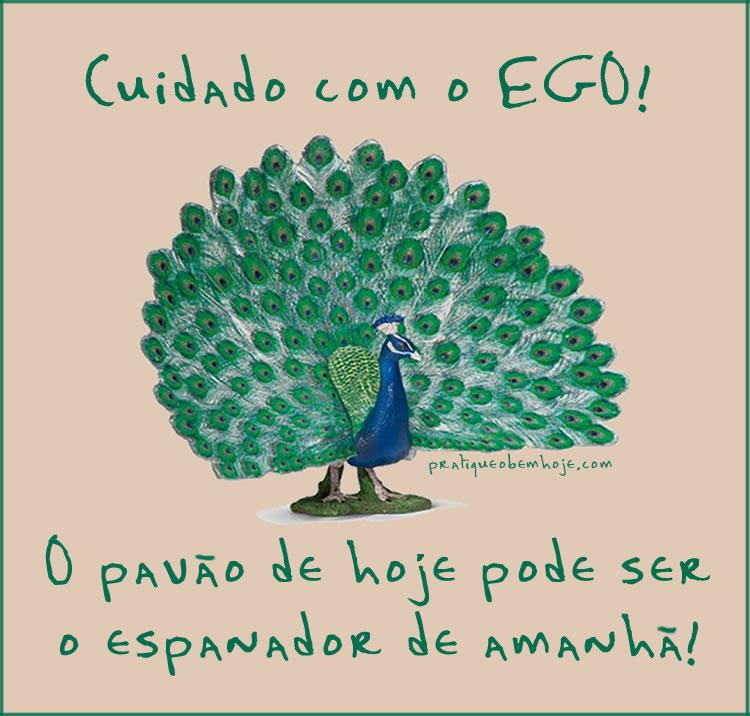 Cuidado com o ego.  O pavão de hoje pode ser o espanador de amanhã.