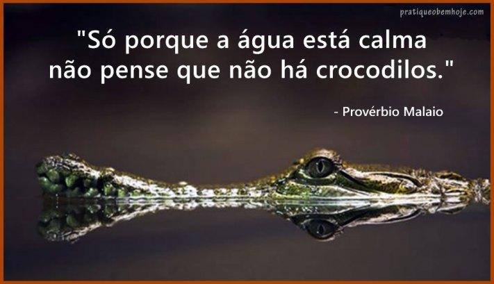 Só porque a água está calma não pense que não há crocodilos