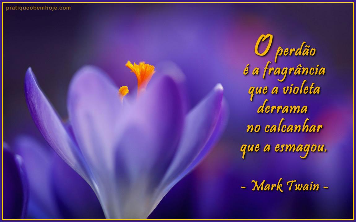 O perdão é a fragrância que a violeta derrama no calcanhar que a esmagou