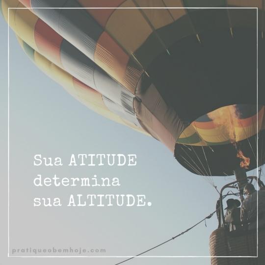 sua-atitudedeterminasua-altitude