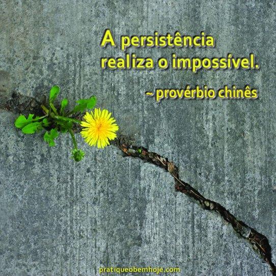 A persistência realiza o impossível
