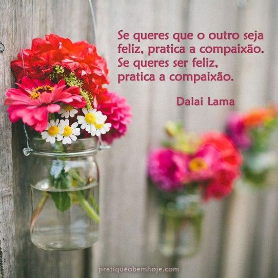 Se queres que o outro seja feliz, pratica a compaixão
