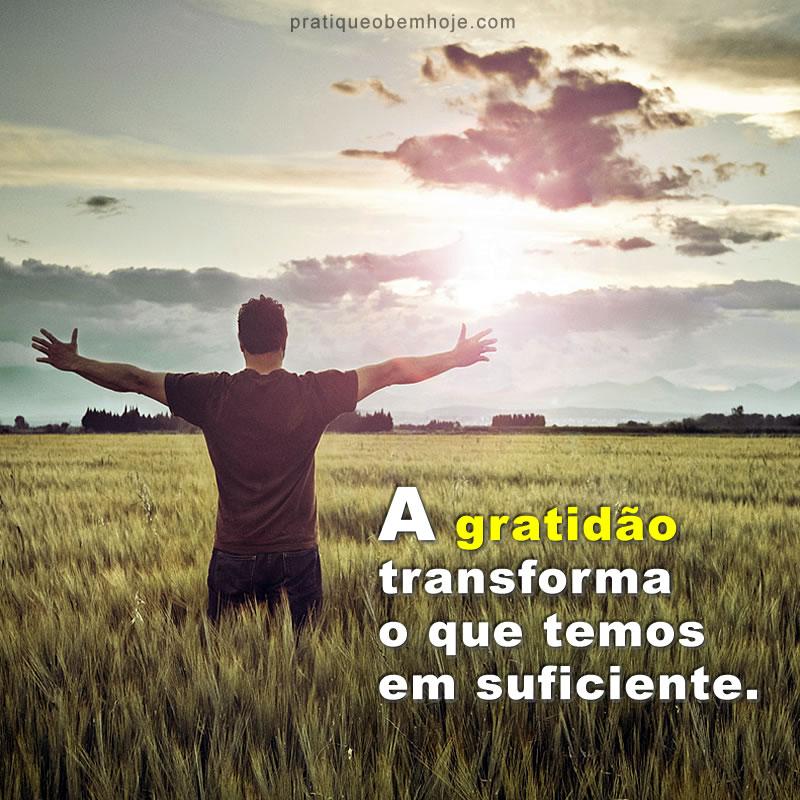 A gratidão transforma o que temos em suficiente