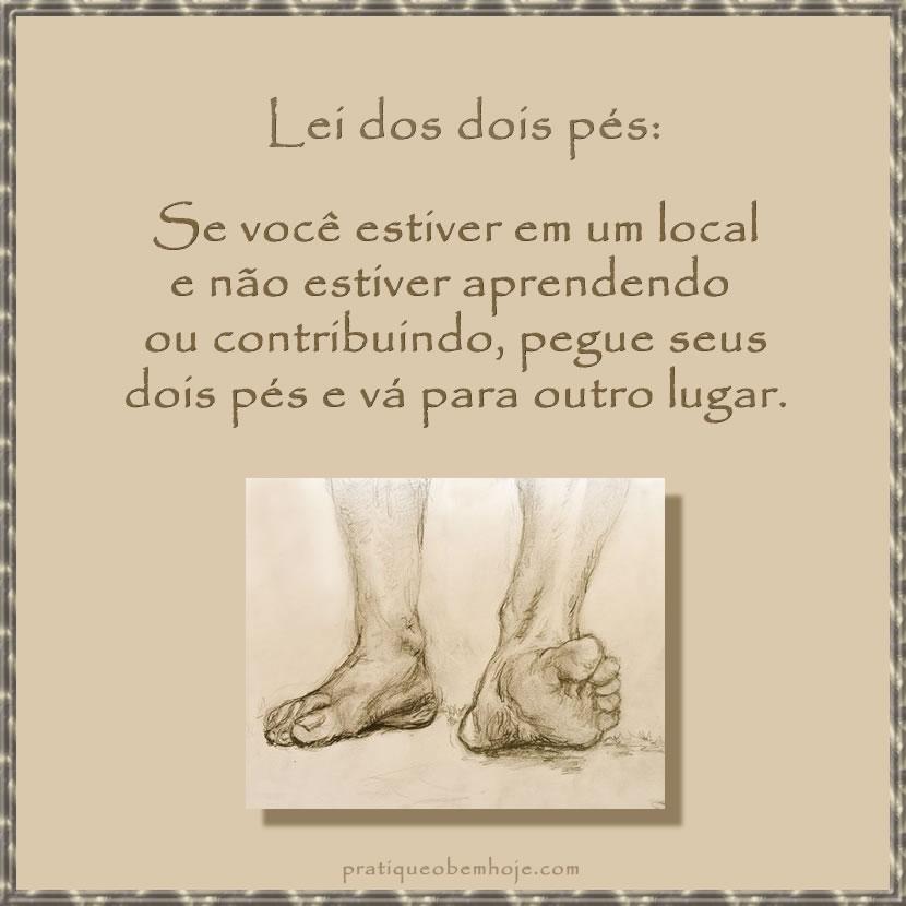 Lei dos dois pés