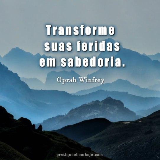 Transforme suas feridas em sabedoria